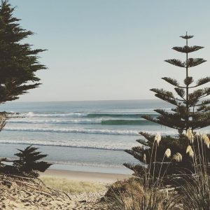 Been a crazy good run of waves the last fewhellip